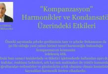 kompanzasyon-harmonikler-ve-kondansator-uzerindeki-etkileri