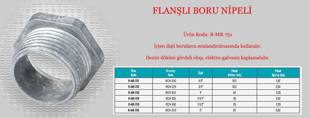 boru-nipel-flansli-gorsel-data