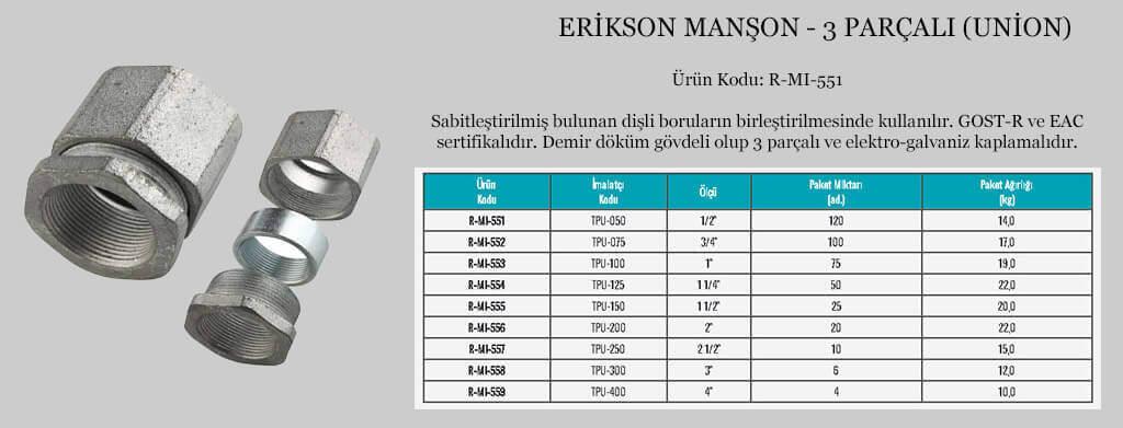 erikson-manson-gorseli