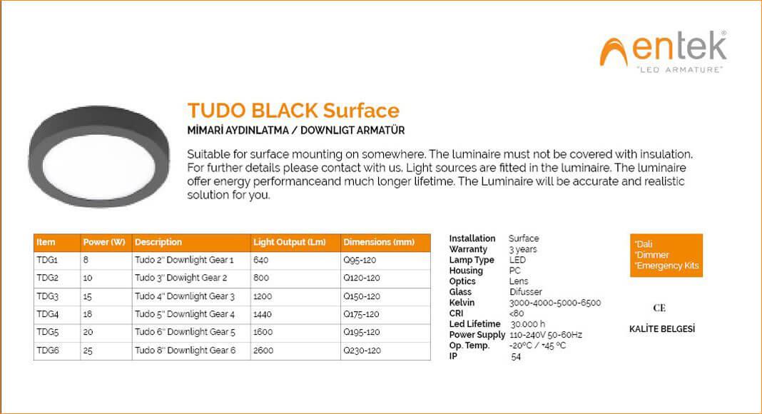 downlight-armatur-tudo-black-surface