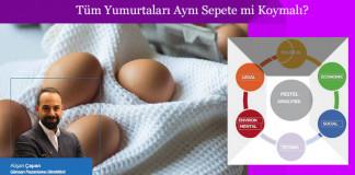pestle-analizi-ve-yumurta-krizi-hakkinda-makale-gorseli