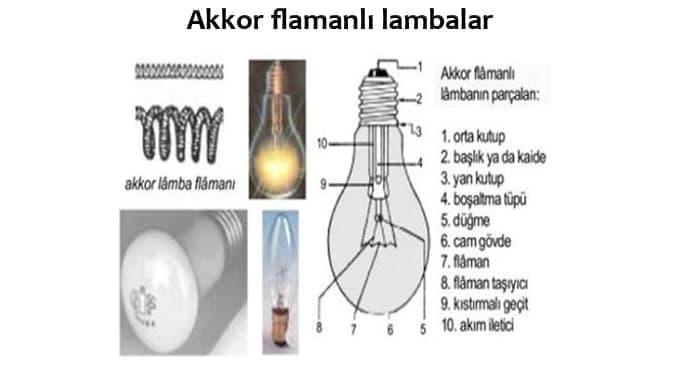 Akkor-Flamanli-Lambalar