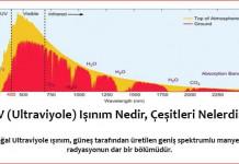 UV (Ultraviyole) Nedir, Çeşitleri Nelerdir, Nerelerde Kullanılır ?