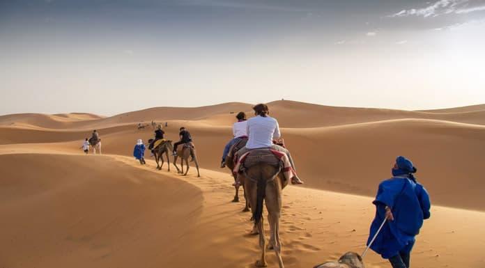 Cezayir-Colleri